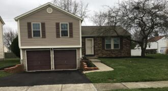 1073 Discovery Dr.